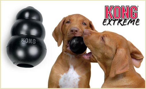 KONG Extreme Dog Toy deal on doggyloot