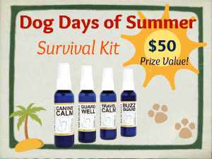 Dog Days Summer Survival Kit