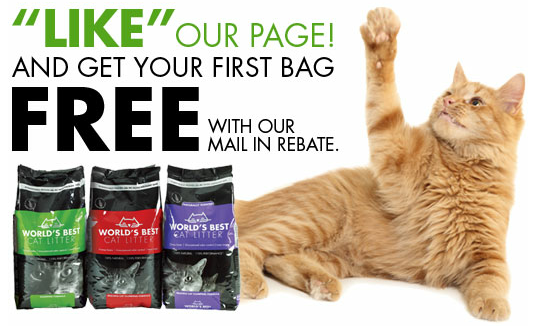 Free Bag of Cat Litter
