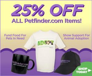 Petfinder items on sale