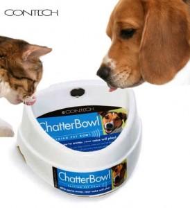 chatterbowl talking dog bowl