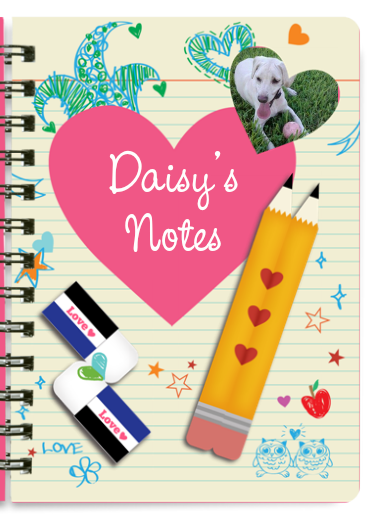 $1 notebook offer