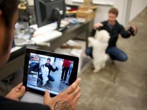 Mark Zuckerberg and his Puli pup, Beast