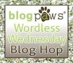 Wordless Wednesday Pet Blog Hop