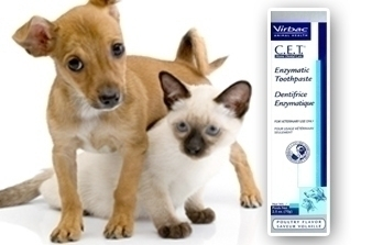 CET Toothpaste for Dogs and Cats