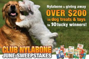 Nylabone June Giveaway