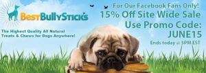 best bully stick promo code 15% off
