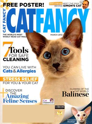 Cat Fancy Magazine Discount