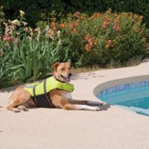 Outward Hound Pet Lifesaver Jacket