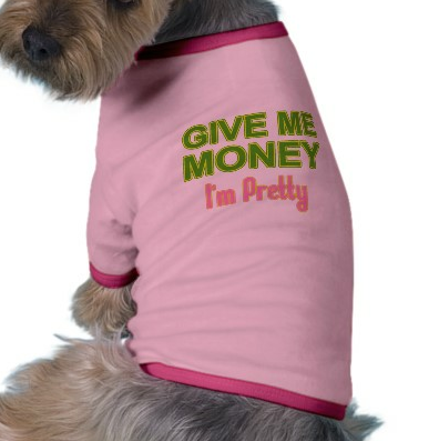 pretty money dog
