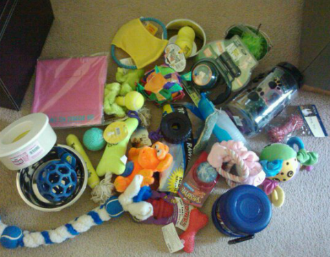 dog toys and pet supplies