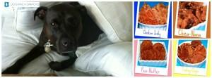 dog treats, chicken jerky, snacks, treats, made in usa, coco, black dog, human grade, dog pack snacks