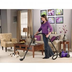 Eureka Pet Lover Mighty Mite Vacuum