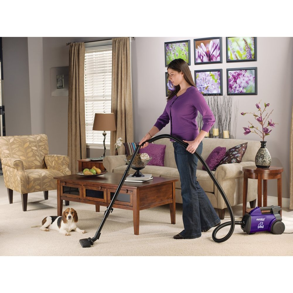 Eureka Pet Lover Mighty Mite Vacuum