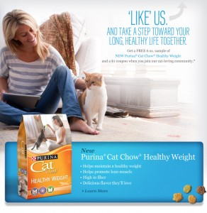 Free Cat Food Sample and Coupon