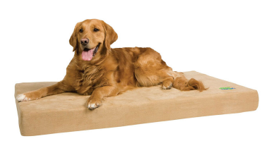 Memory Foam Dog Bed on Sale
