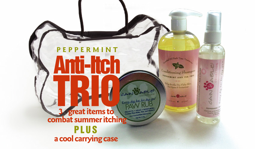 Summer Itch Trio Deal