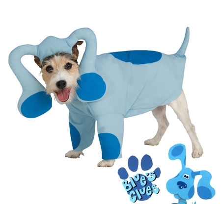 cute dog wearing Blues Clues Dog Costume