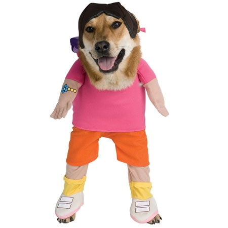 Cute Dog in Dora the Explorer Dog Costume