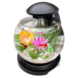 Globe Aquarium Kit