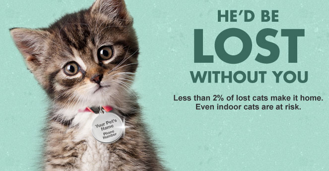 pet id tag, free from arm & hammer, help find lost pets, for cats and dogs