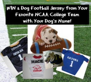 College Football Jersey Giveaway for Dogs