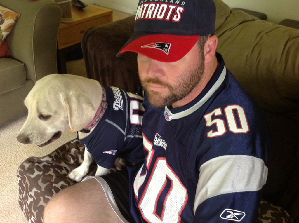 Daisy in her Patriots Jersey, watching preseason Patriots game, dog football jersey