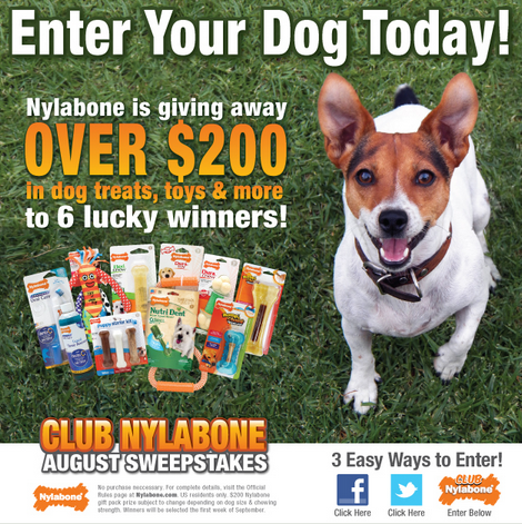 Nylabone dog toys, dog treats, nylabone giveaway, cute dog with nylabones