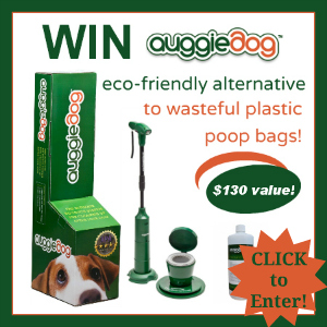 auggiedog, poop pickup tool, yard tool for dog owners