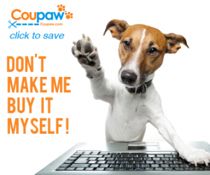 dog using laptop to find great pet deals