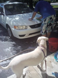 Daisy car wash supervisor