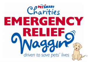 Emergency Relief Waggin