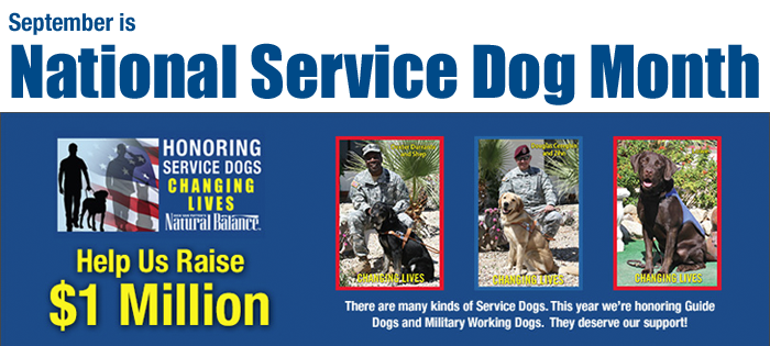 National Service Dog Month with Natural Balance