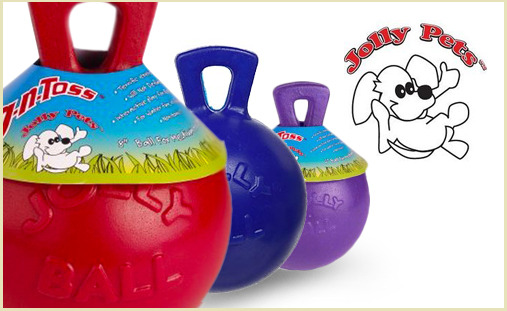 Jolly Pet Tug n Toss Ball, dog toy