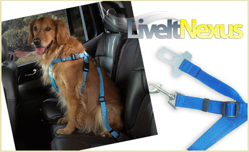 pet safety seat belt for car