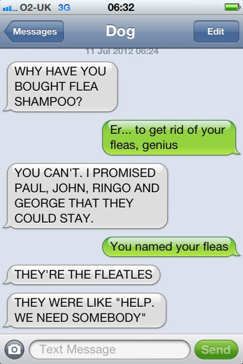 fleatles dog text