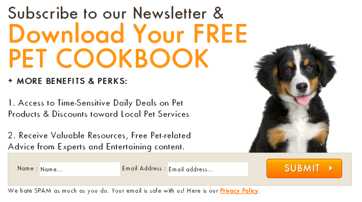 free pet cookbook download
