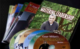 Cesars Way Mastering Leadership DVD Series
