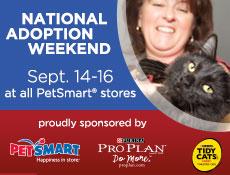 petsmart adoption event