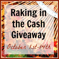 raking in the cash giveaway