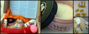 examples of products in Bugsy's Box for dogs