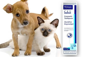 CET Dog Toothpaste