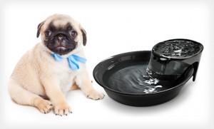 Ceramic Pet Water Fountain