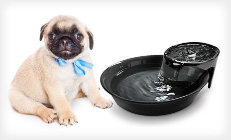 Ceramic Pet Water Fountain