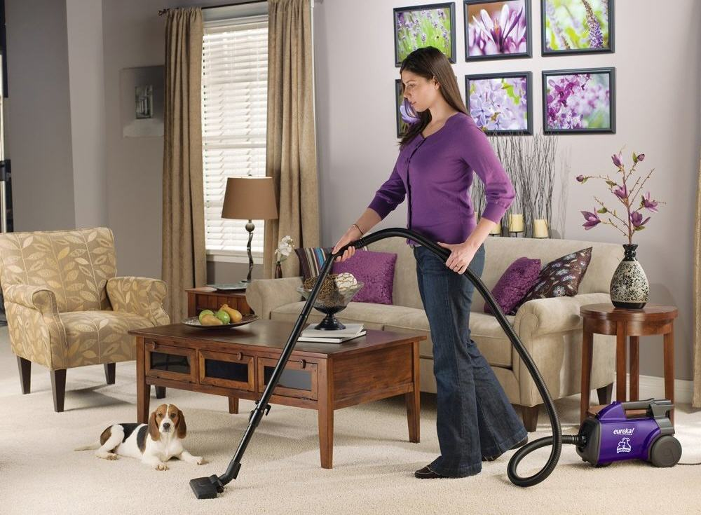 Pet Lover Mighty Vacuum by Eureka