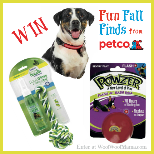 Petco Fall Finds Giveaway