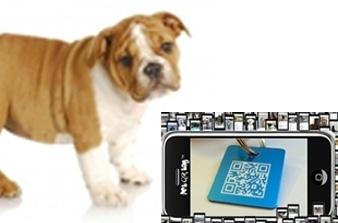 QR code dog tag