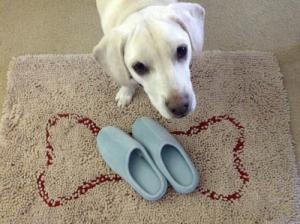 blue memory foam slippers for women
