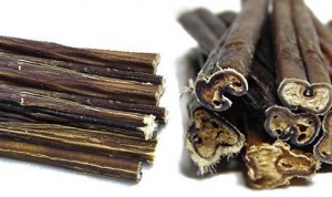 bully sticks chews for dogs