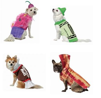 costumes for dogs, halloween, costumes, dogs, dog halloween, halloween costumes